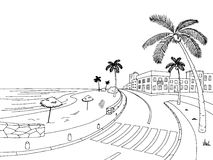 Street road palm tree graphic black white landscape sketch illustration Royalty Free Stock Images