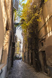Street in Rome, Italy Royalty Free Stock Image