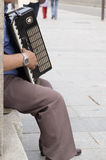 Street's artist. Singer in the street of Madrid Stock Photography