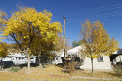 Street scene. Street in the autumn in the town of Moab Stock Photos
