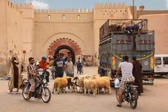 Street scene. sheeps in Bab Khemis. Marrakesh. Morocco. Lorry unloading sheeps in front of Bab el Khemis. Marrakesh. Morocco Stock Photo