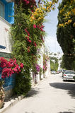 Street scene Sidi Bou Said Tunisia Stock Photo