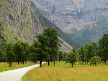 Street through scenic valley in alpine landscape Stock Image