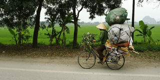 Street seller. On bicycle, come back from market stock photos