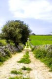 Street, in the sicilian landsc. The sicilian landscape, characteristic country street in the hinterland stock images