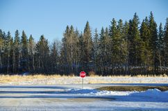 Elk island Royalty Free Stock Image
