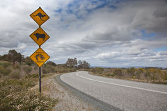 Street Signs. Unusual street signage to the left of a winding road receeding into the distance against a ominous clouded sky Royalty Free Stock Photos