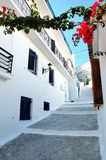 Street of skiathos Town. Typical Greek Street view from Skiathos Town Royalty Free Stock Image