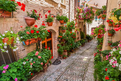 Street in small town in Italy in sunny day in Umbria Royalty Free Stock Image