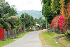 Street in a small tropical village. A lot of flowers. Stock Photos