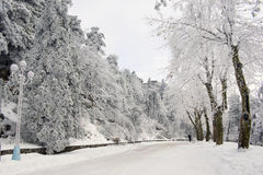 Street with snow_1 Royalty Free Stock Images