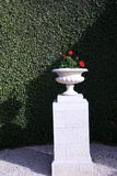Street stone vase on a stone pedestal against the living-trimmed hedges Royalty Free Stock Photo