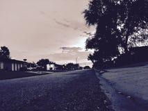 Street in suburbia