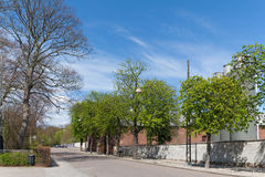 Street in sunny spring day Royalty Free Stock Images