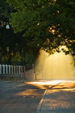 Street at sunrise Royalty Free Stock Photo