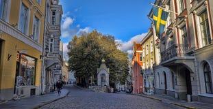 Street of Tallinn. Royalty Free Stock Photo