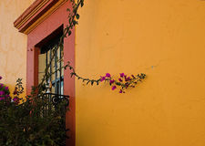 Street of Tequisquiapan, Mexico.  Royalty Free Stock Photos