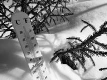 Street thermometer with a temperature of Celsius and Fahrenheit in the snow next to a young pine royalty free stock photo