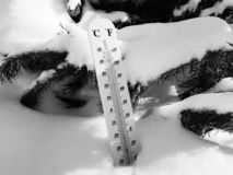Street thermometer with a temperature of Celsius and Fahrenheit in the snow next to a young pine stock photography