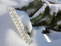 Street thermometer with a temperature of Celsius and Fahrenheit in the snow next to a young pine royalty free stock image