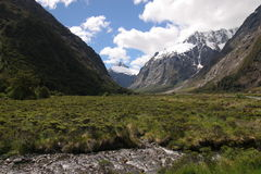 Street to Milford Sound. Wonderful landscape on the way to the Milford Sound Royalty Free Stock Photography