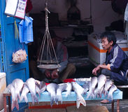 Street trade of the fish in Kathmandu, Nepal. Royalty Free Stock Photography