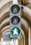Street traffic light Stock Images