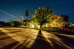 Street and tree illuminated at night Stock Photography