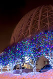 Street trees decorated in the background of Yekaterinburg Circus Stock Photo