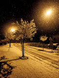 Street with trees, lights and snowflakes Royalty Free Stock Images