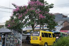 Street tropical town, Indonesia. On the streets of provincial town of Garut in West Java, Indonesia stock images