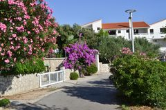 Street of vacation resort city Sunny day, Pag Croatia royalty free stock photo