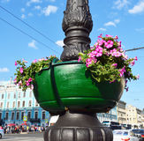 Street vase with red flowers on a column Stock Photos