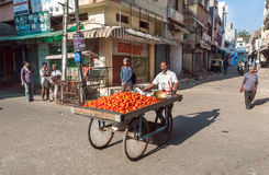 Street vendor with cart full of tomatoes selling vegetables on street of indian city stock images