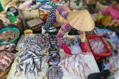 Street Vendor in Hue, Vietnam traditional fish market people selling fresh fish on the sidewalk.  royalty free stock photography