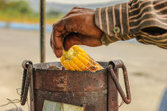 Hand of an Indian Street Vendor Roasting Corn. An Indian street vendor`s hand seen roasting corn on fire in India, Maharashtra Royalty Free Stock Photography