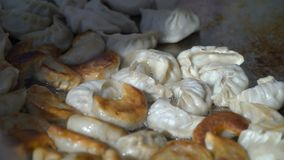 Street vendors cook Nepalese traditional dumpling momos. Street vendors cook Nepalese traditional dumpling momos in the city park stock footage