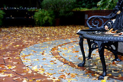 Street view at autumn with bench and leaves Stock Photography