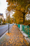 Street view in Karlovy Vary Royalty Free Stock Image