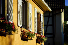 Street view of old windows with shutters, Andlau, France Royalty Free Stock Photography