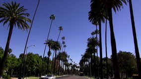 Street view with palm trees in Beverly Hills LOS ANGELES. Street view with palm trees in Beverly Hills City of Los Angeles California stock video