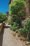 Street view with pebble walkway, flowering plants and little girl in the background at Colle di Val d`Elsa. Street view with pebble walkway, flowering plants Royalty Free Stock Images