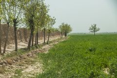 Street and village life in Gardez in Afghanistan in the summer royalty free stock photography