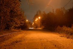 Street in the village at night. Royalty Free Stock Image