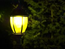 Street vintage lamp. With christmas tree in the evening outside stock images
