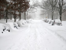 Street in Washington During the Blizzard Stock Image