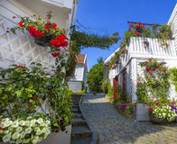 Street with white wooden houses in Stavanger.  Norway. Stock Images