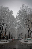 Street in winter. Snow falling on a city street Royalty Free Stock Photo