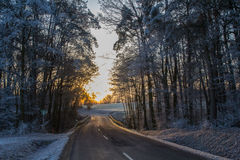 Street in winter stock photography