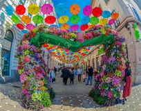 Free Street With Colored Umbrellas In Timisoara, Romania Royalty Free Stock Images - 146944319